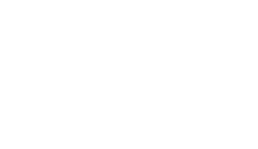 Vivi Pet Care Logo